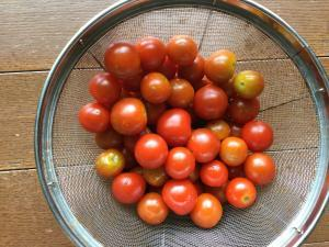 専門農家の作ったミニトマト