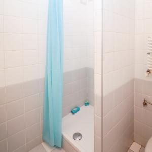 シャワーカーテンに赤カビ!酵素系漂白剤、カビキラー(塩素系)どちらが効果的?