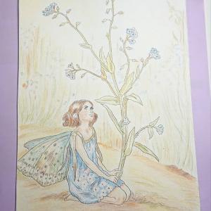 大人の塗り絵 夏の花の妖精編