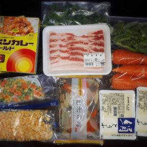 今日の節約おうちごはんと業務スーパー買い出し【簡単ネギ塩豚レシピ】