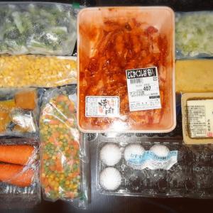 【牛カルビ】今日の節約おうちごはんと冷凍庫と友人お泊まり