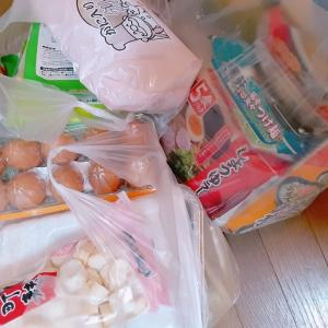 【業務スーパー購入品】冷凍小分け作業と唯との工作
