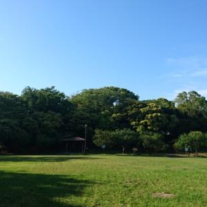 公園が好き。