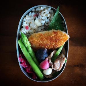 【薬味を食べよう】夏のサッパリ酢飯弁当