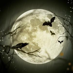 ※募集※ 10月31日(土)   23時から無償 満月の一斉ヒーリング開催します