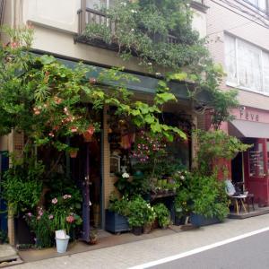 荻窪・西荻、レトロ・アンティークお散歩コース