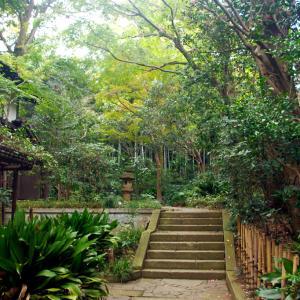 「武蔵野」を満喫する野川散策コース