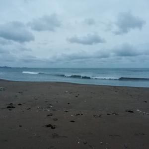 今日の波は強風につきまして~波も抑えられちゃってます(>_
