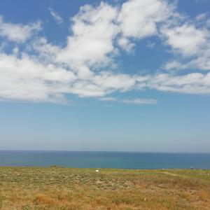 さすがに夏本番❕日本海は湖状態の静けさですね~(>_
