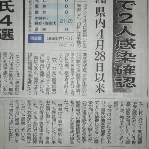 福井県で新型コロナ感染者、それと雨は、なんとか小康状態にて保ってくれてます。