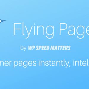 Flying Pages 先読み高速化プラグインの使い方|WordPress