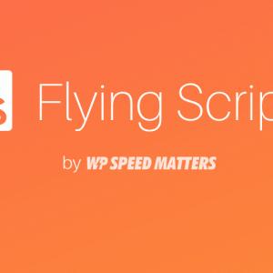 Flying Scripts – JavaScript 読み飛ばし高速化プラグインの使い方|WordPress