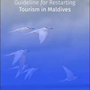 モルディブ観光業再開:観光客への注意事項を発表、中国向け'fast lane'も。