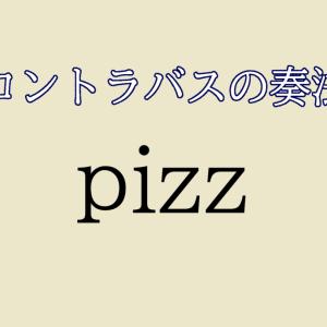 【コントラバス】pizzicato(ピッチカート) /  奏法【初心者編】