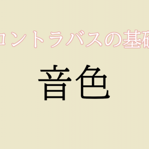 【コントラバス】音色 / 基本【初心者編】