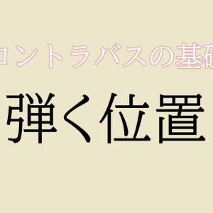【コントラバス】弾く位置 / 基本【初心者編】