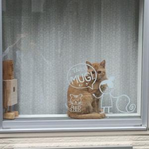 ニャルソック猫と、名作『裏窓』