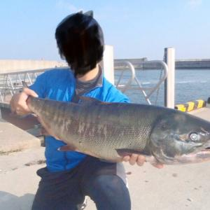 出会った魚たち^_^