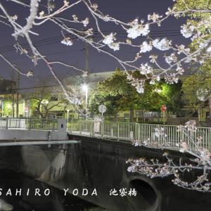 池袋橋(東京都杉並区)