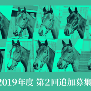 シルク2019第2回追加募集馬出資判断(スピードリッパーの18、ラッキートゥビーミーの18)と総合順位