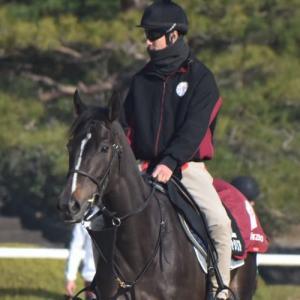リアアメリア優駿牝馬に向けて楽な手応えで終い12.6