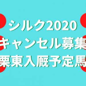 シルク2020キャンセル募集(栗東入厩予定馬)