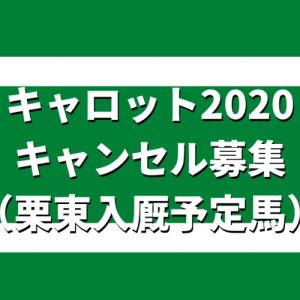 キャロット2020キャンセル募集(栗東入厩予定馬)