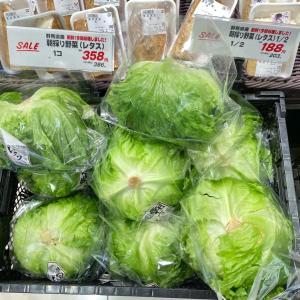 【追記】本日の野菜のお値段