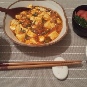 夜ご飯だけ!月1万円食費生活!3/27-3/28