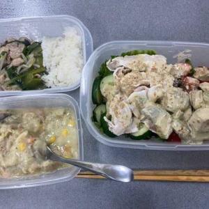 【弁当・猫】食べれる✨1日半冷蔵庫に置きっぱだった手作り弁当