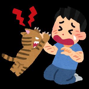 猫の爪切りは大変!嫌がる愛猫のための爪切り対策6選