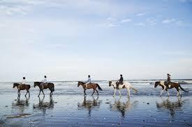 九十九里の砂浜で楽しむ乗馬