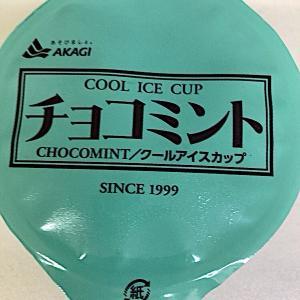 赤城乳業チョコミントアイスがチョコチップたっぷりで美味しい!原材料・栄養成分をご紹介