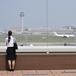 飛行機を見ていると、どこかに出掛けたくなります