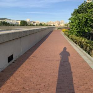 【iPhone写真】夕日を背中に、長く伸びた影を撮ろう