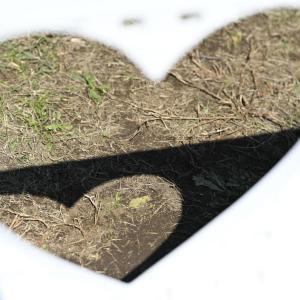 【公園スナップ写真】二人の愛ランド