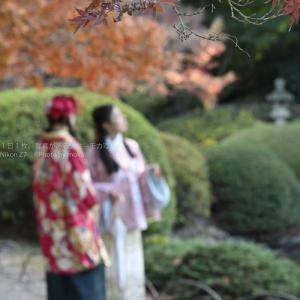 【公園スナップ撮影】新宿御苑で紅葉を満喫