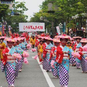 博多どんたく祭りのパレードの概要とおすすめポイント