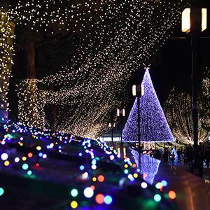 【煌めきの世界】幻想的な光の空間に思わず感嘆!多摩市恒例のイルミネーションが絶景!