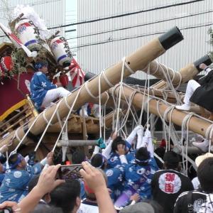 今でも毎年見に行く、尼崎のだんじり祭りです!