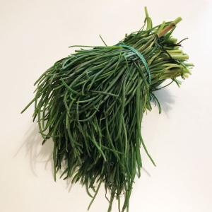 イタリアの春野菜アグレッティとは