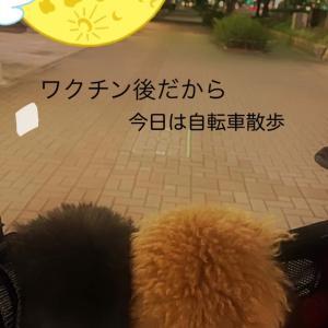宇野トロ&エマ日記 自転車で散歩♪ エマちゃん今日は頑張った!ゴスロリ披露♪ 浅田家♪