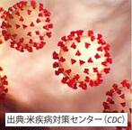 【新型肺炎】 肺を守る食生活