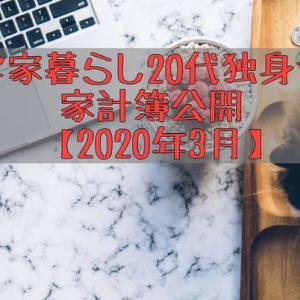 実家暮らし20代独身女の家計簿【2020年3月】