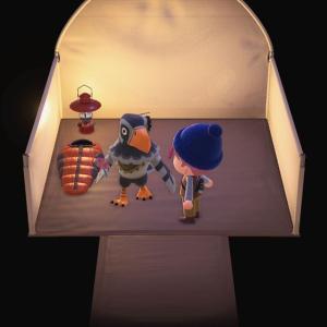 あつまれどうぶつの森-48 キャンプサイト厳選②
