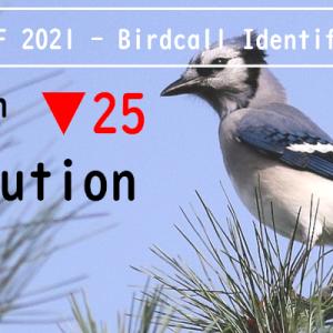 【Kaggle挑戦記】鳥コンペ2(BirdCLEF 2021)銅メダル振り返り【#8】