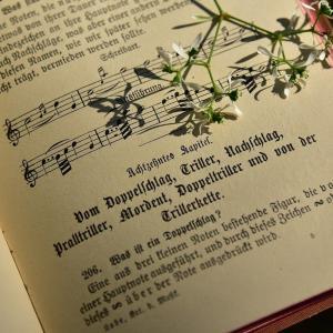 音楽の国ドイツ、実はクラシック音楽が不人気?!ドイツの音楽事情について解説!