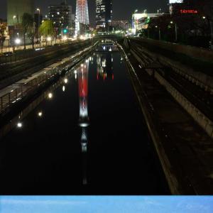 夜の夜景・高尾山~の富士山