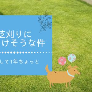 家の外構|芝生の手入れに入居1年ちょっとでくじけそうな件