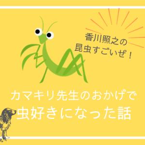 虫嫌いの息子が「カマキリ先生」のおかげで虫好きになった話